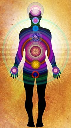 The 7 main chakras
